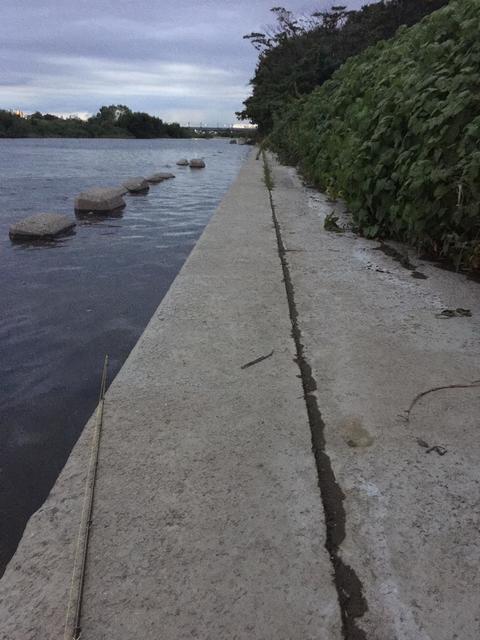 スモールマウス 多摩川中流域 実釣レポート 2018年8月31日