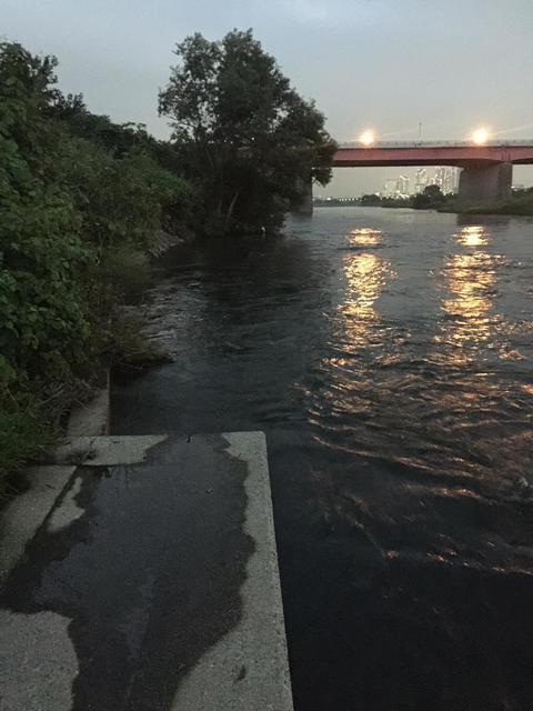 スモールマウス 多摩川中流域 実釣レポート 2018年9月3日