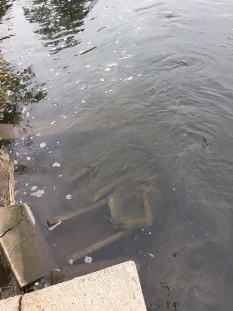 スモールマウス 多摩川中流域 実釣レポート 2018年9月20日