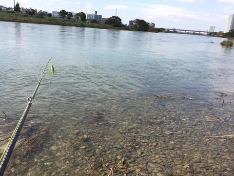 スモールマウス 多摩川中流域 実釣レポート 2018年10月10日