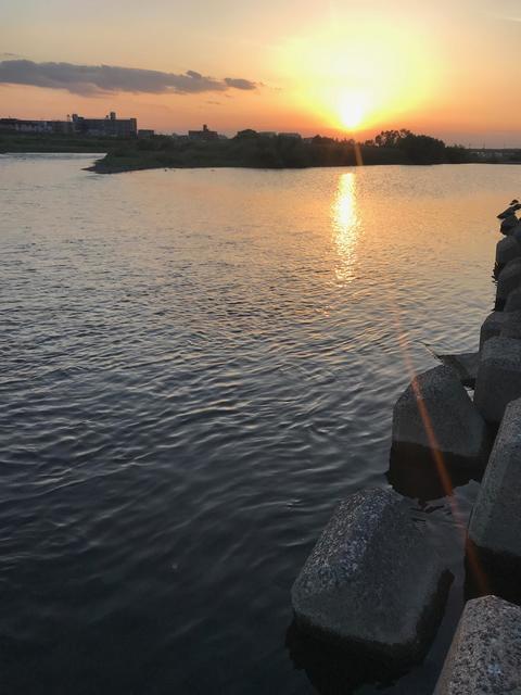 スモールマウス 多摩川中流域 実釣レポート 2019年5月17日