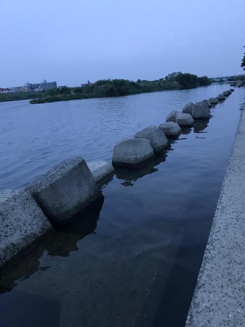 スモールマウス 多摩川中流域 実釣レポート 2019年7月3日