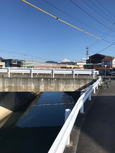 シーバス、チヌ 巴川下流域 実釣レポート 2020年1月4日